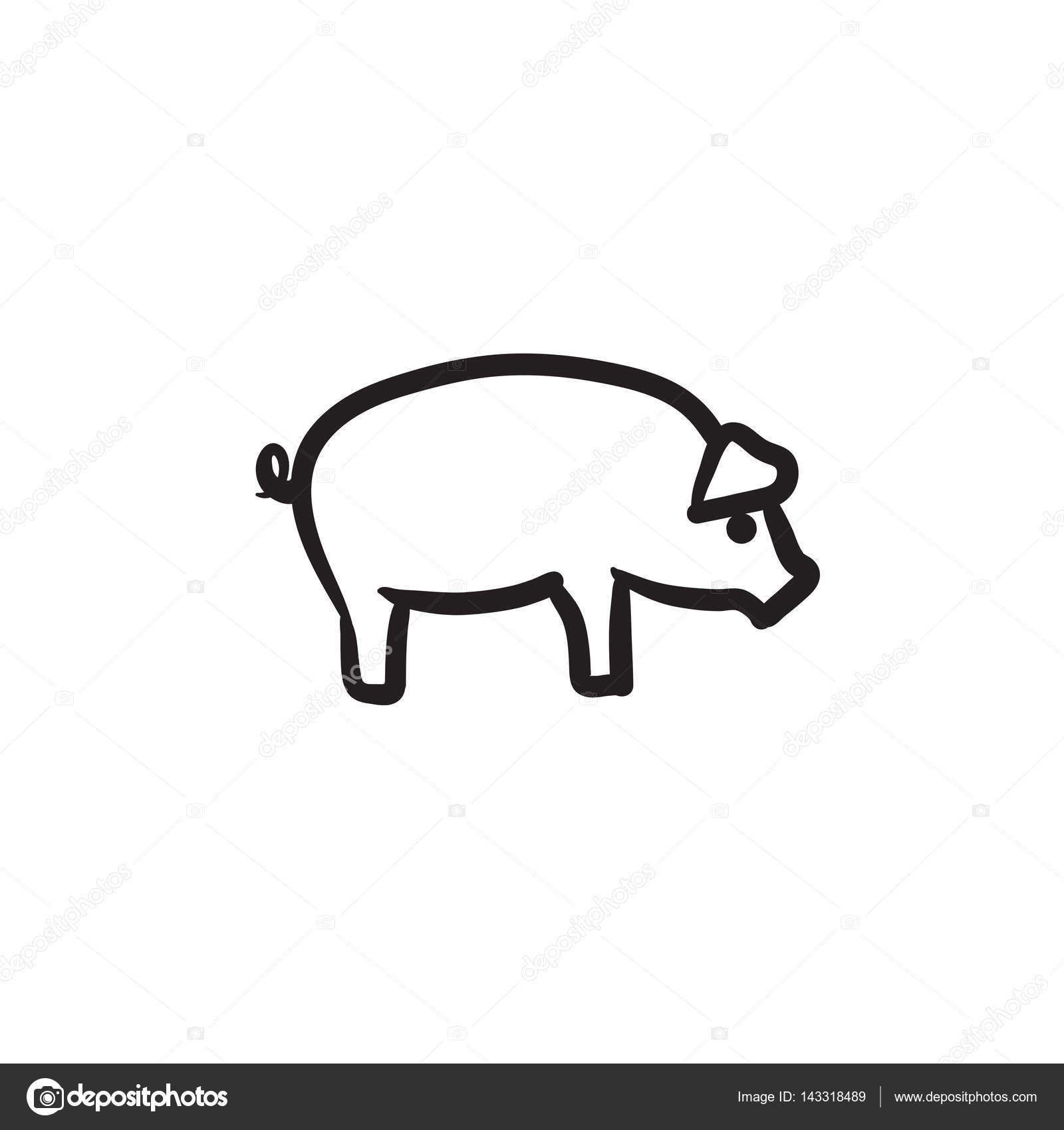 Icono de esbozo de cerdo — Vector de stock © rastudio #143318489