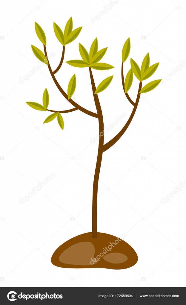 Tree Growing In The Soil Vector Illustration Stock Vector C Visualgeneration 172659604 A laurel and hardy cartoon. tree growing in the soil vector illustration stock vector c visualgeneration 172659604