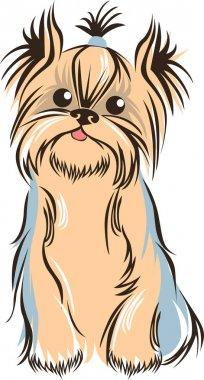 Yorkshiere terrier outline sketch