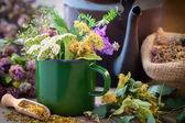 Smaltované hrnek léto léčivé byliny, starou konvici čaje a léčivé rostliny pro zdravý bylinkový čaj. Bylinná medicína.