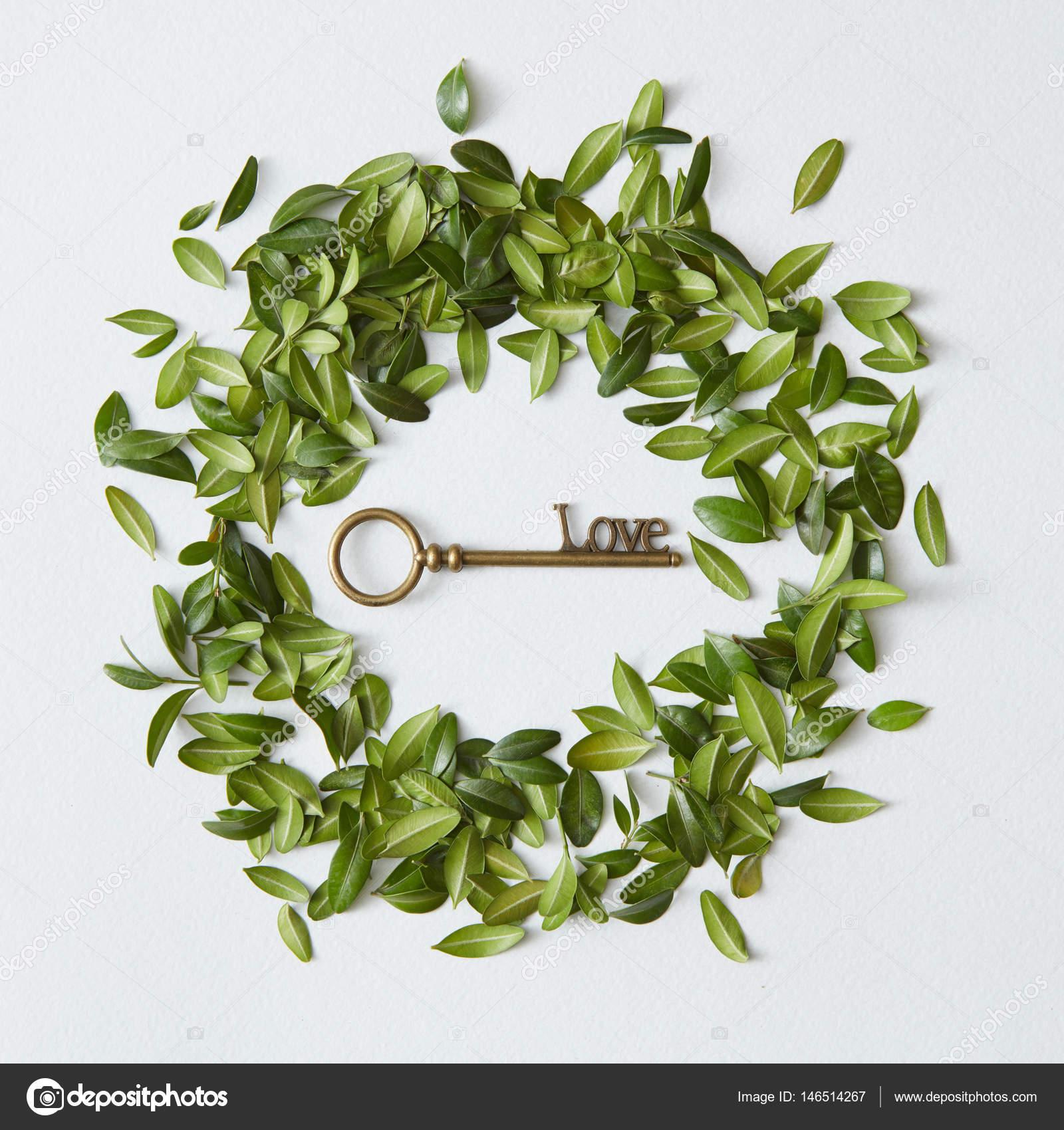 marco de hojas con llave vintage — Foto de stock © artjazz #146514267