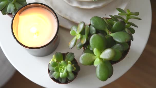 Succulents and candles, cozy white scandinavian home decoration closeup