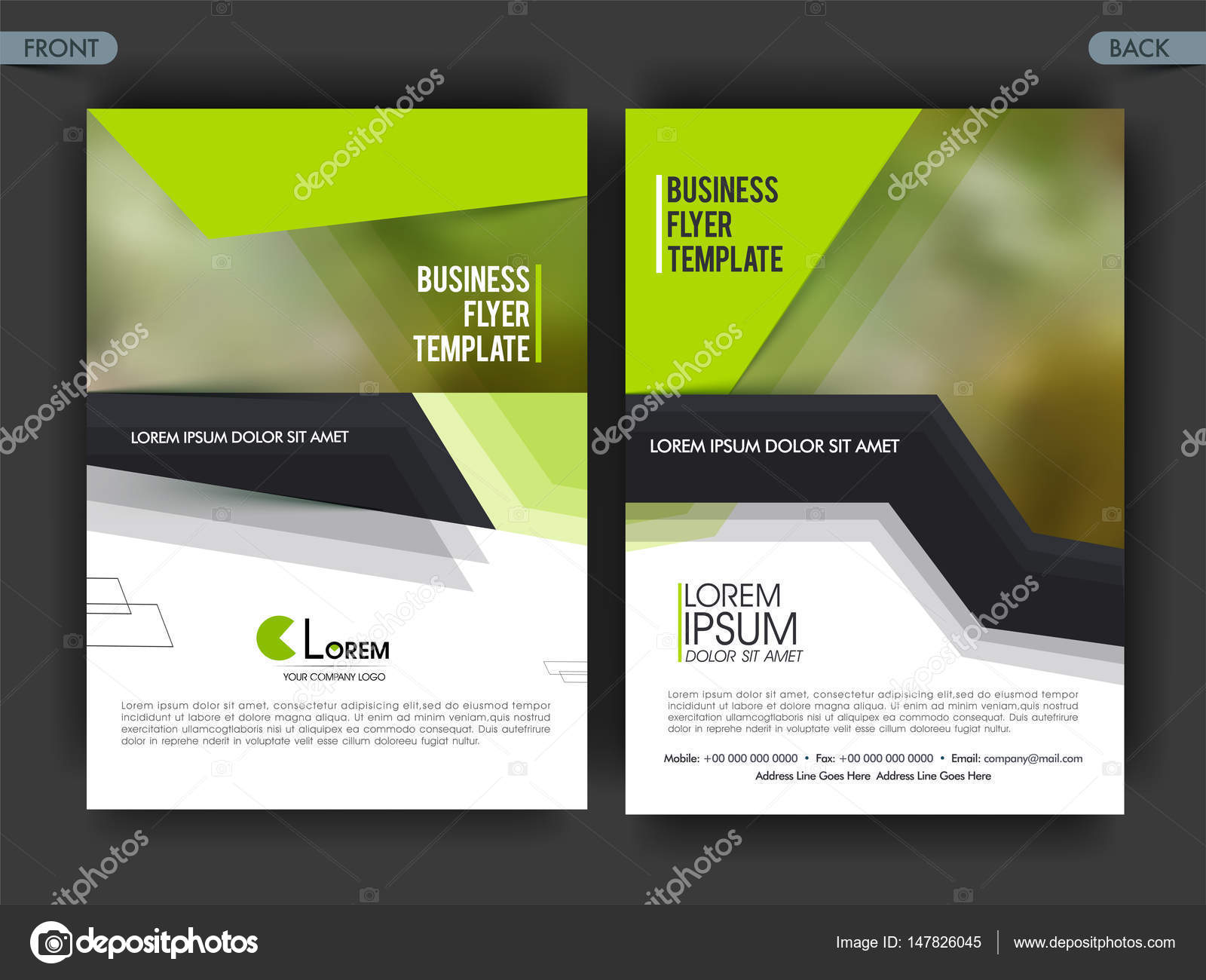 two pages business flyer template or brochure stock vector