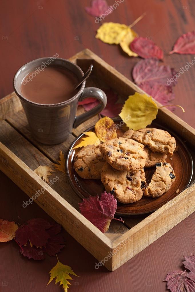 https://st3.depositphotos.com/1001944/12559/i/950/depositphotos_125591986-stock-photo-hot-chocolate-warming-drink-cozy.jpg