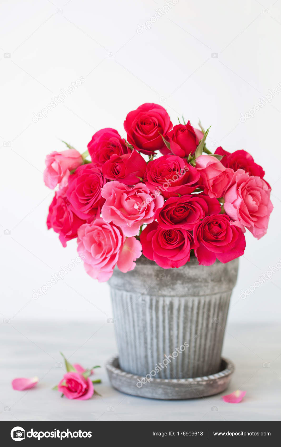 Beautiful Red Rose Flowers Bouquet In Vase Over White Stock Photo