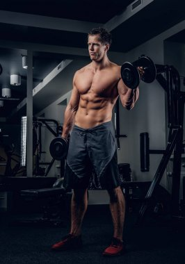 Shirtless man doing biceps workout