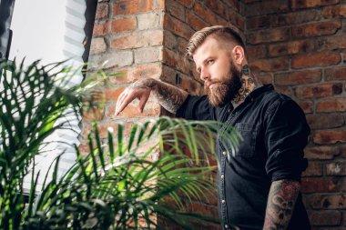 Bearded man in a room