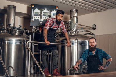 Men in the craft beer microbrewery
