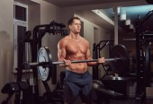 Muscular shirtless bodybuilder male lifting a barbell on a biceps in the gym.