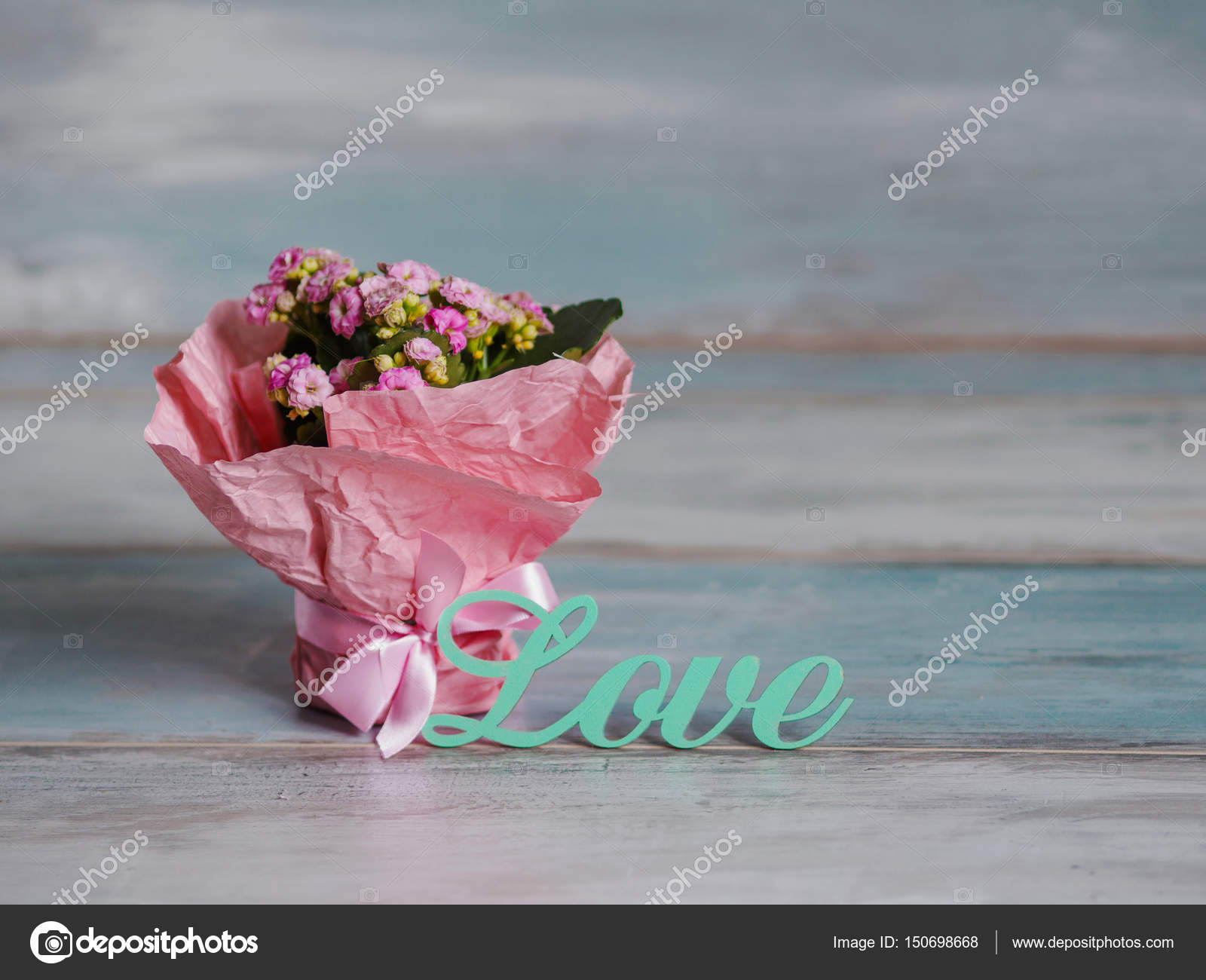 Beautiful pot of flowers wrapped in pink paper gift with love beautiful pot of flowers wrapped in pink paper photo by kriscole izmirmasajfo