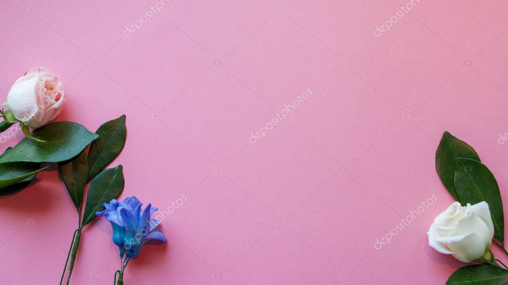 flowers on pink background, free space for your text