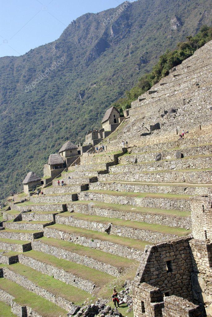 Imágenes Guardas Incas Cultivos En Terrazas Y Cabañas