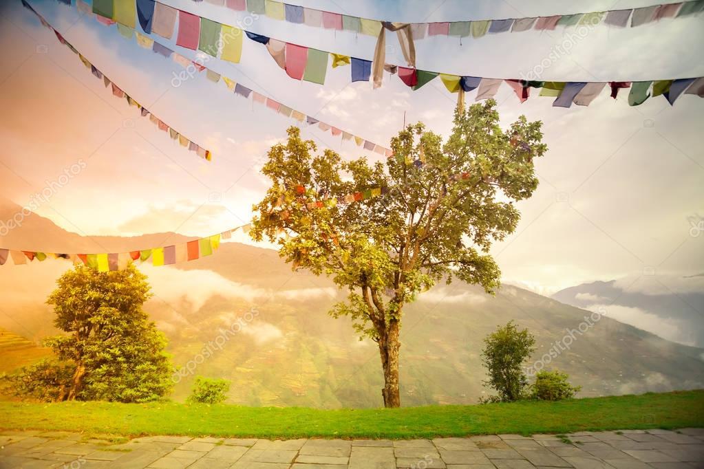 Buddhist tibetan prayer flags against cloudy sky