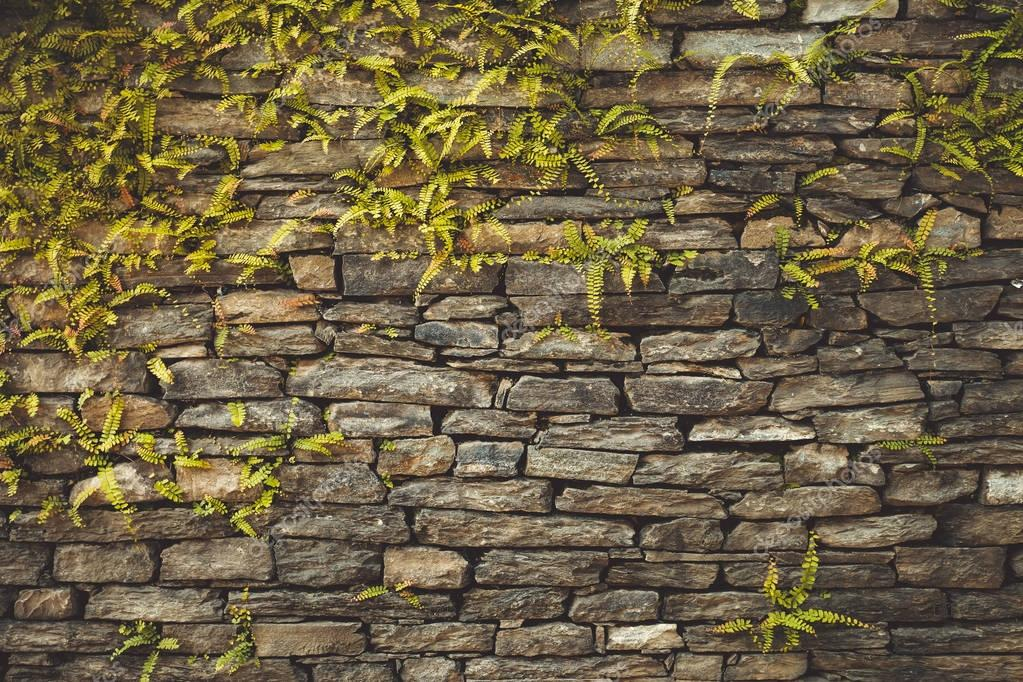Dark old brown stone wall background