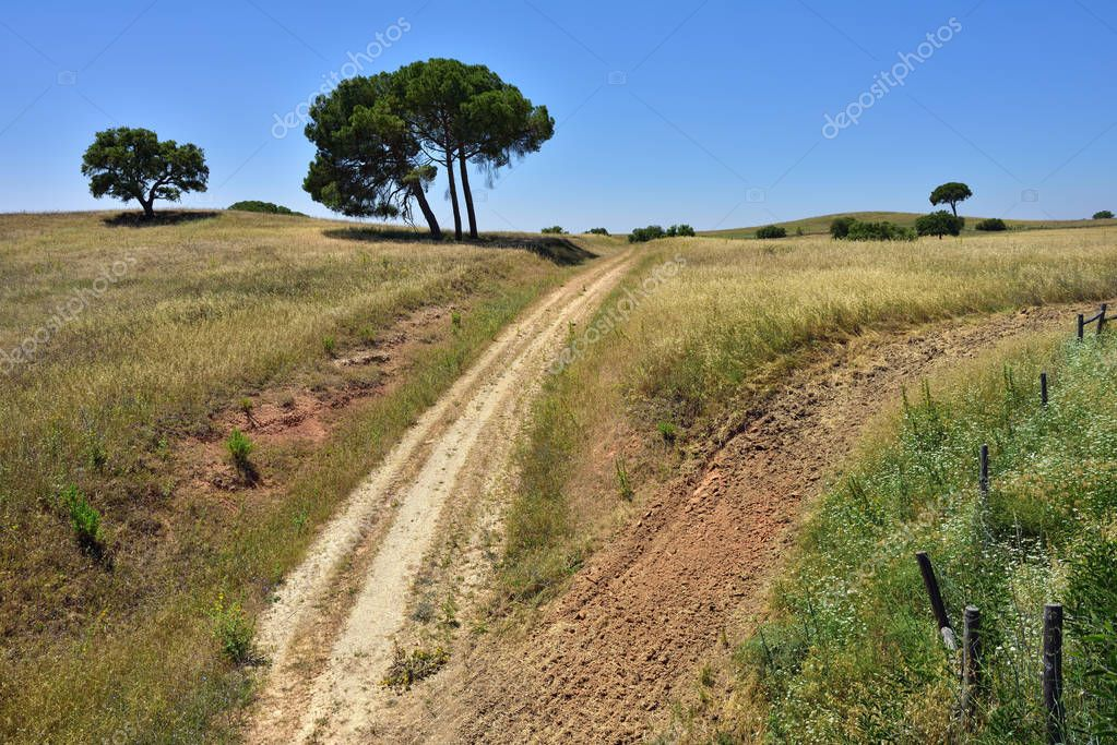 Rural lanscape, Portugal