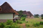 Uganda, Lake George, Africa