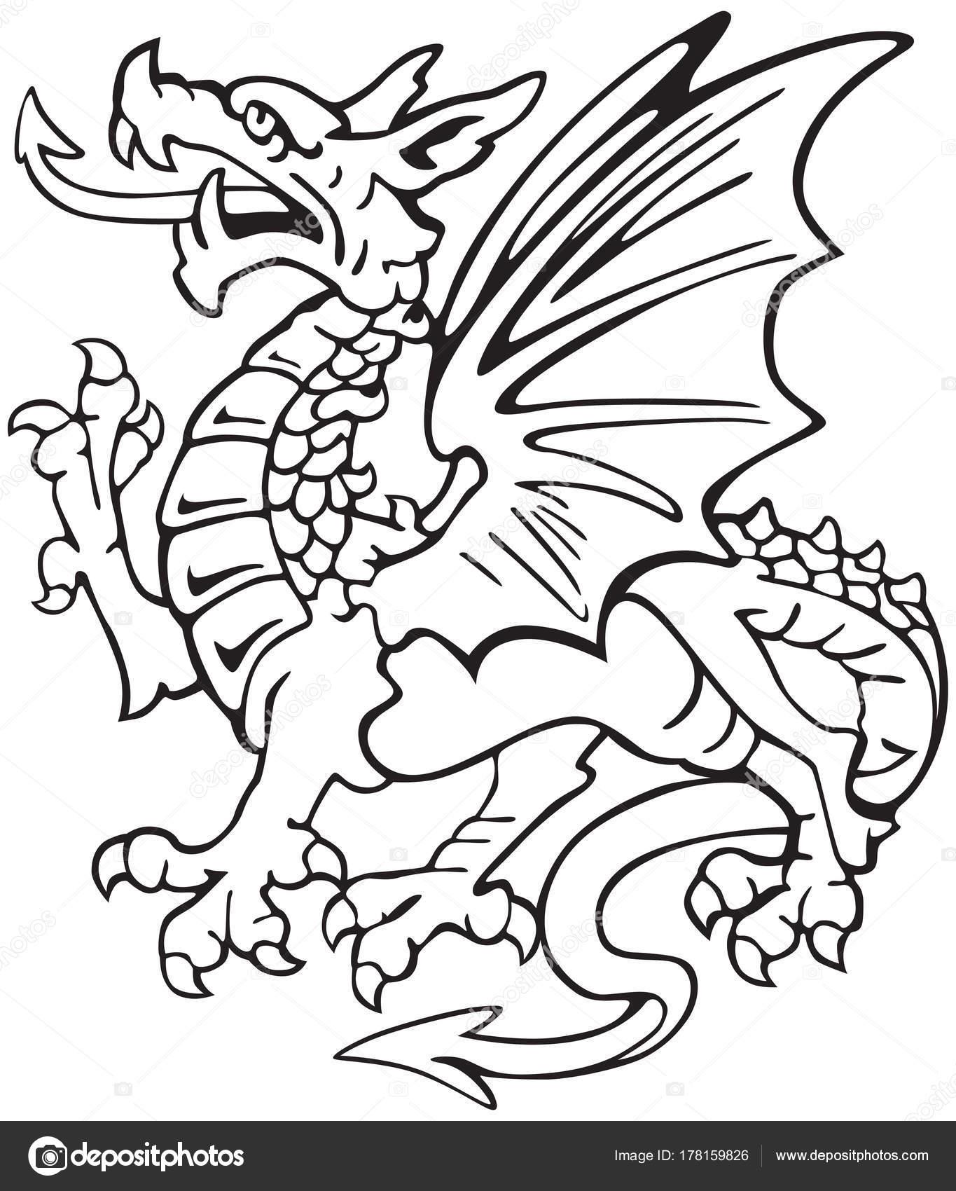 heraldische Drachen No1 — Stockvektor © bussja #178159826