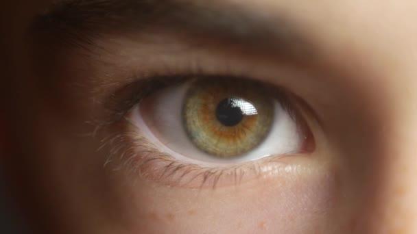 a childs eye close up