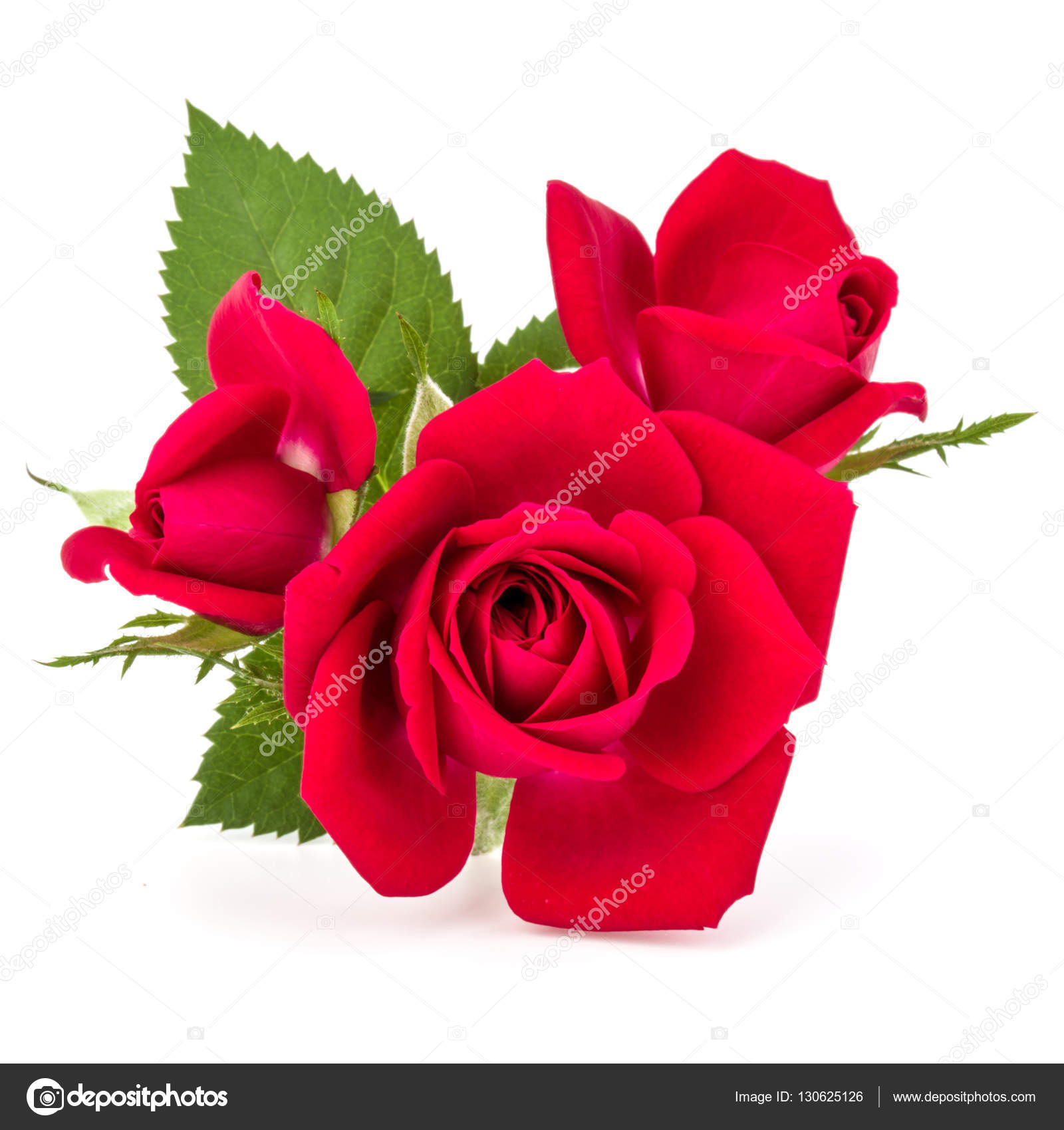 Red Rose Flowers Bouquet Stock Photo Natika 130625126