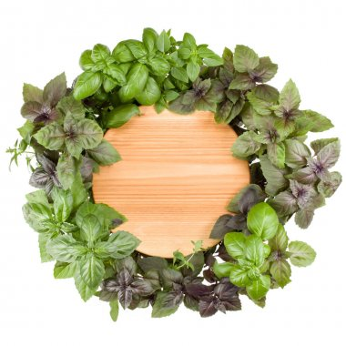 Empty round wooden cutting board. Various sweet basil herb leaves edged.. Healthy food concept. Top view with copy space. stock vector