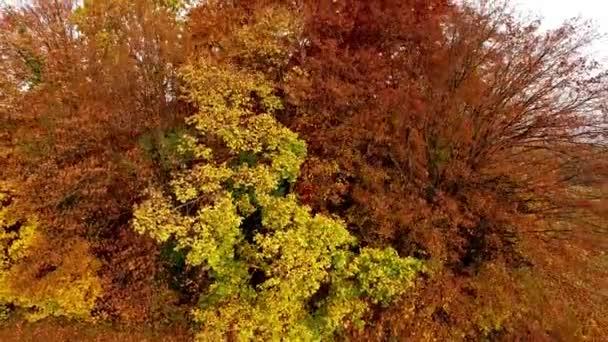 Stoupající nad podzimní krajinou