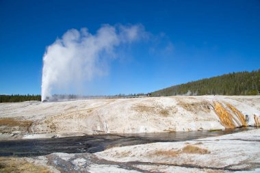 eyser eruption in the Yellowstone
