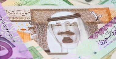 Colourful Saudi Arabia Riyal banknotes