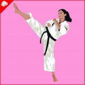 Fényképek Martial arts. Karate nő harcos silhouette jelenet. Vektor. EPS