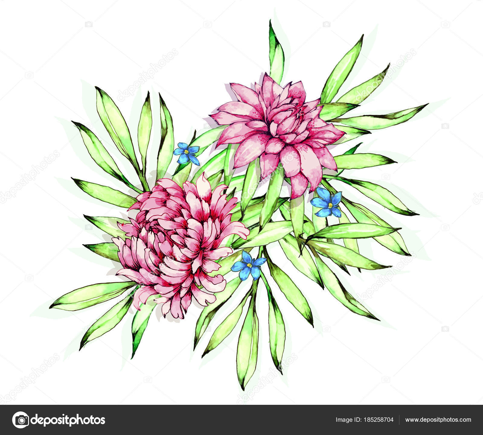 Colorful Flower Drawing Colorful Floral Collection Leaves Flowers Drawing Watercolor Stock Vector C Applea 185258704
