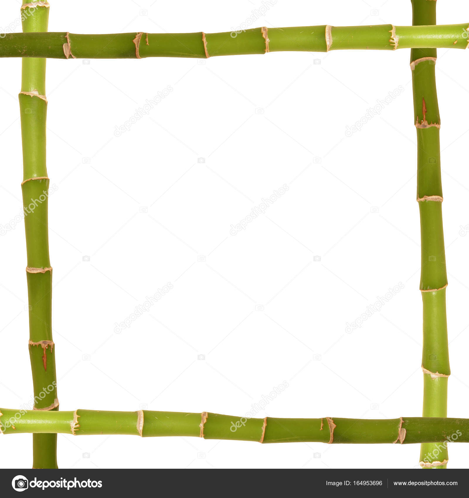 Bambus-Rahmen-abstrakt — Stockfoto © ibogdan #164953696