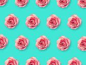 Háttérben a rózsaszín rózsa virágzik