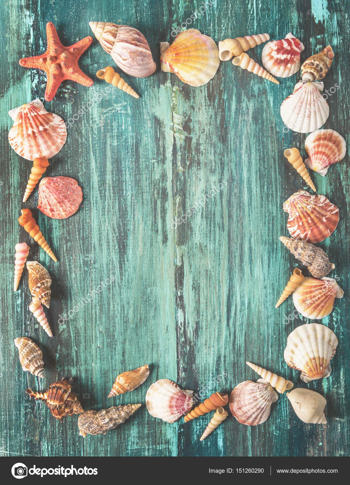 Marco de conchas y estrellas de mar sobre fondo de madera — Fotos de ...