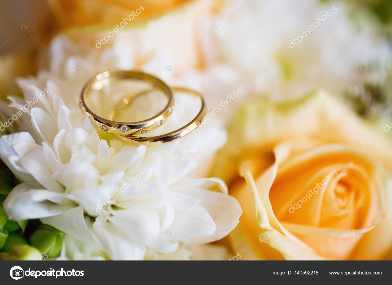 Wedding Rings With Rose Flowers Selective Focus Stock Photo: Ivory Roses And Wedding Rings At Reisefeber.org