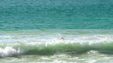 Waves on Nai Harn beach