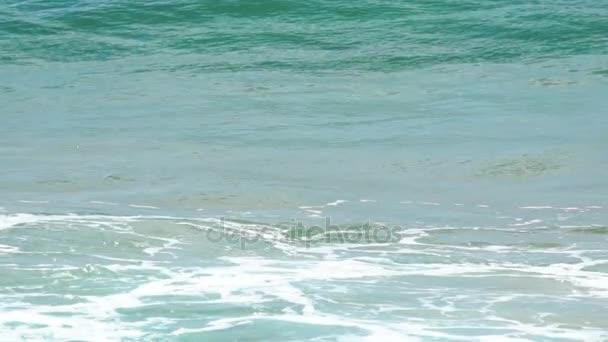Türkiz gördülő hullám, lassított felvétel