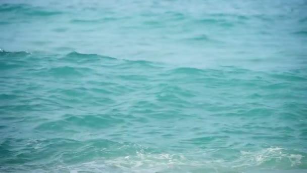 Tyrkysová vlna, zpomalený pohyb