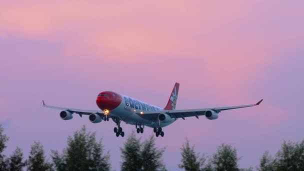 Widebody airplane approaching before landing