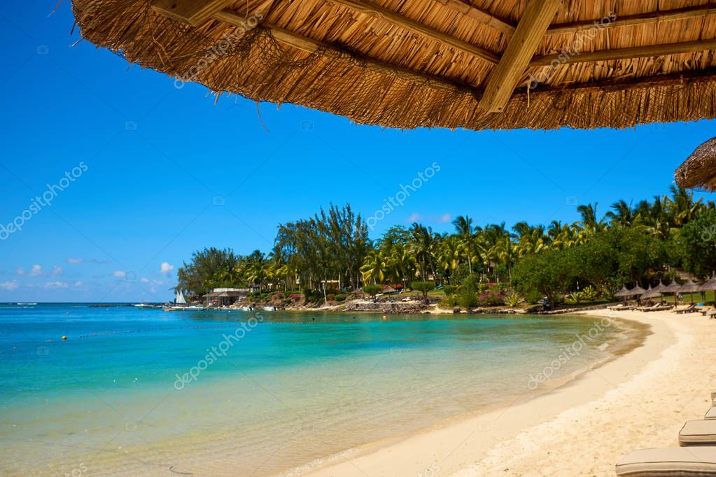 White sand beach with lounge chairs and umbrellas