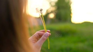 Beauty woman blowing dandelion against the sunset, back view