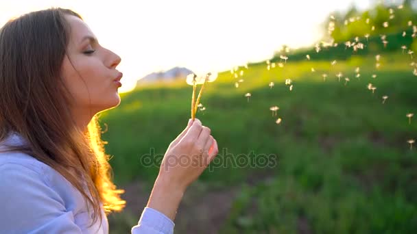 Krása žena fouká Pampeliška proti západu slunce, pomalý pohyb