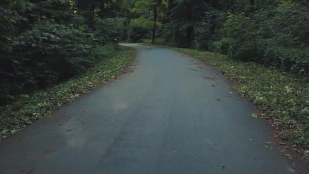 Motoros lovaglás egy motorkerékpár, egy fákkal körülvett út