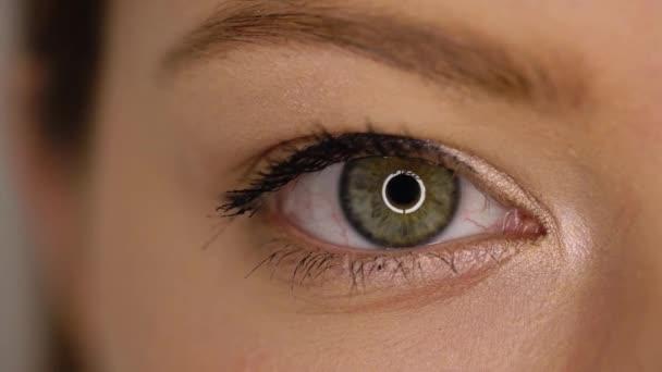 Makro-Nahsicht-Auge blinkt