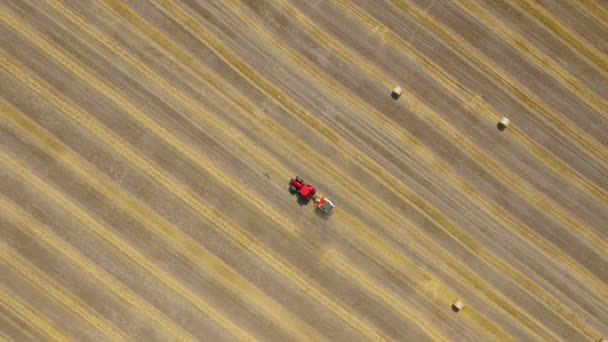 Aerial view of haymaking processed into round bales. Red tractor works in the field. Shot at different speeds - normal and accelerated