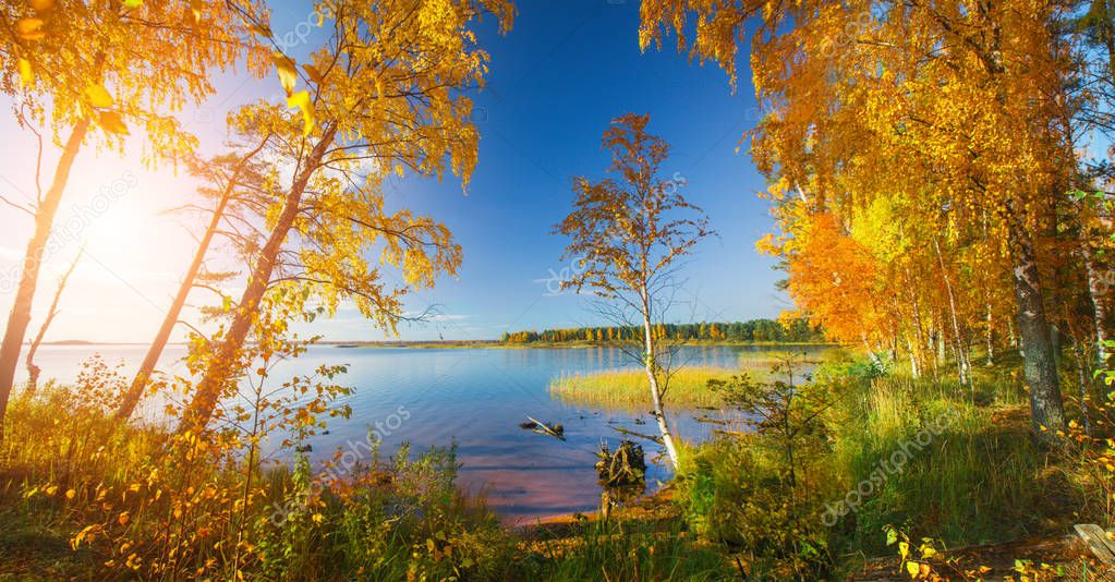 Autumn Trees and lake