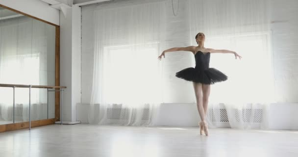 graceful girl practicing ballet in the Studio
