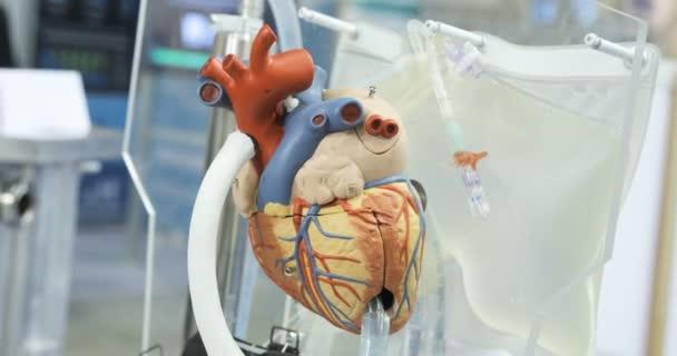 Секс с донорским сердцем