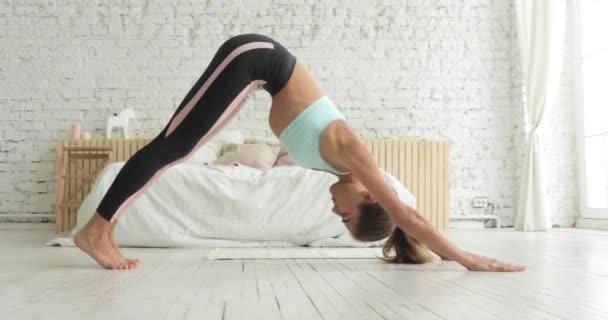 Žena cvičit dolů čelí pes pózovat v jóga sportovní cvičení doma.
