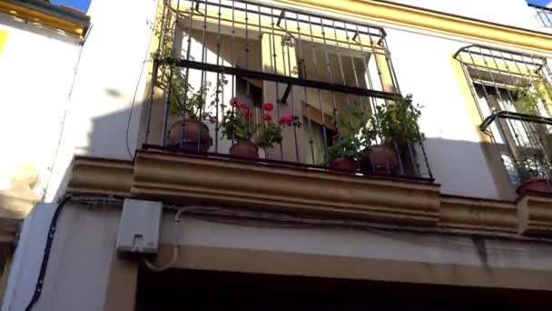 Buildings on Agustin Moreno Street in Cordoba, Andalusia, Spain