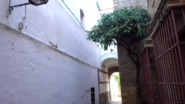 Calleja de la Luna v Córdobě. Cordoba je město v Andalusii, jižní Španělsko