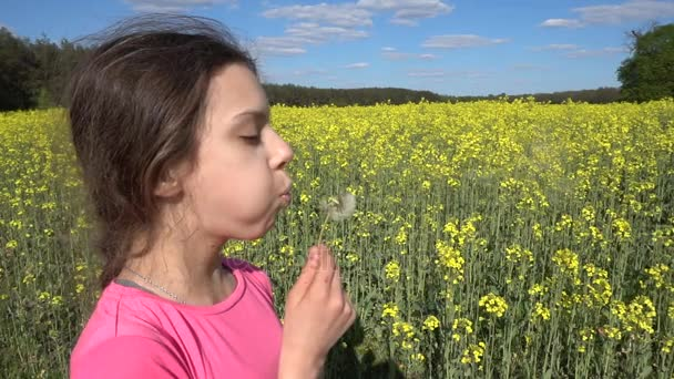 Malá krásná dívka foukání na bílém Pampeliška proti žluté letní řepkové pole